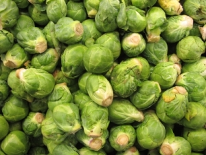 sprouts_billlongshaw